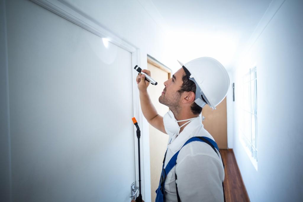 Worker doing pest inspection