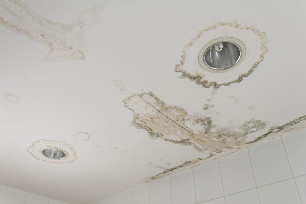 Water damage from room, forming molds