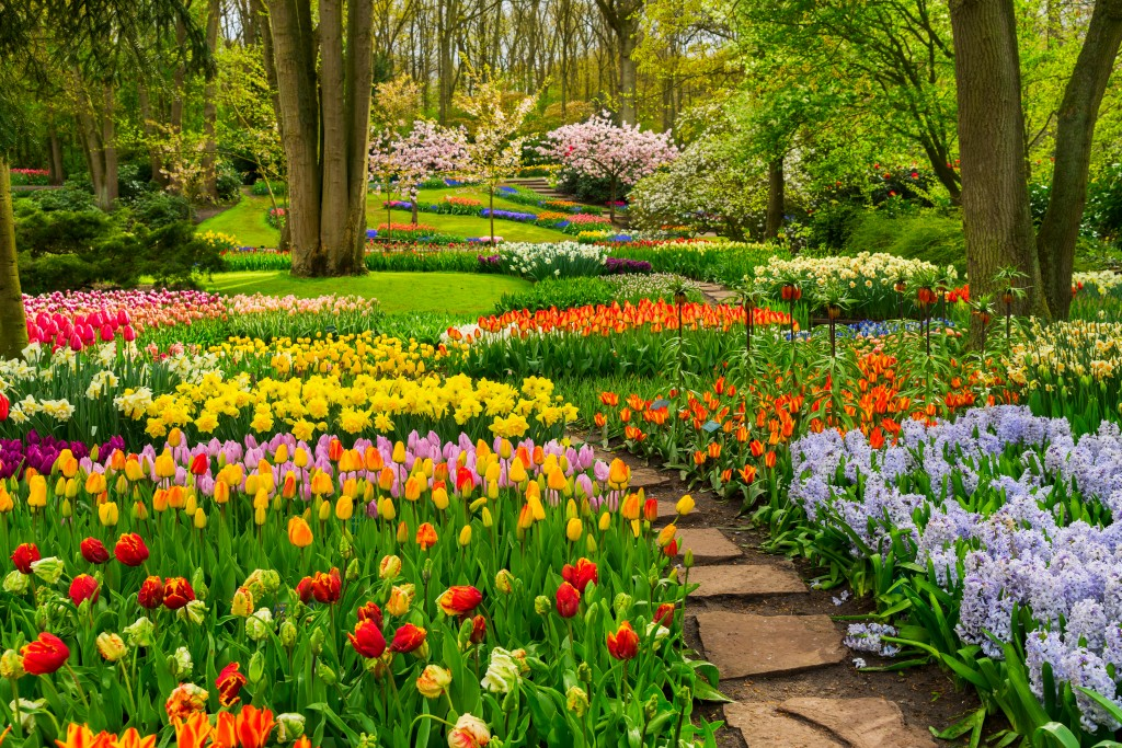 beautiful landscaping with flowers and big trees