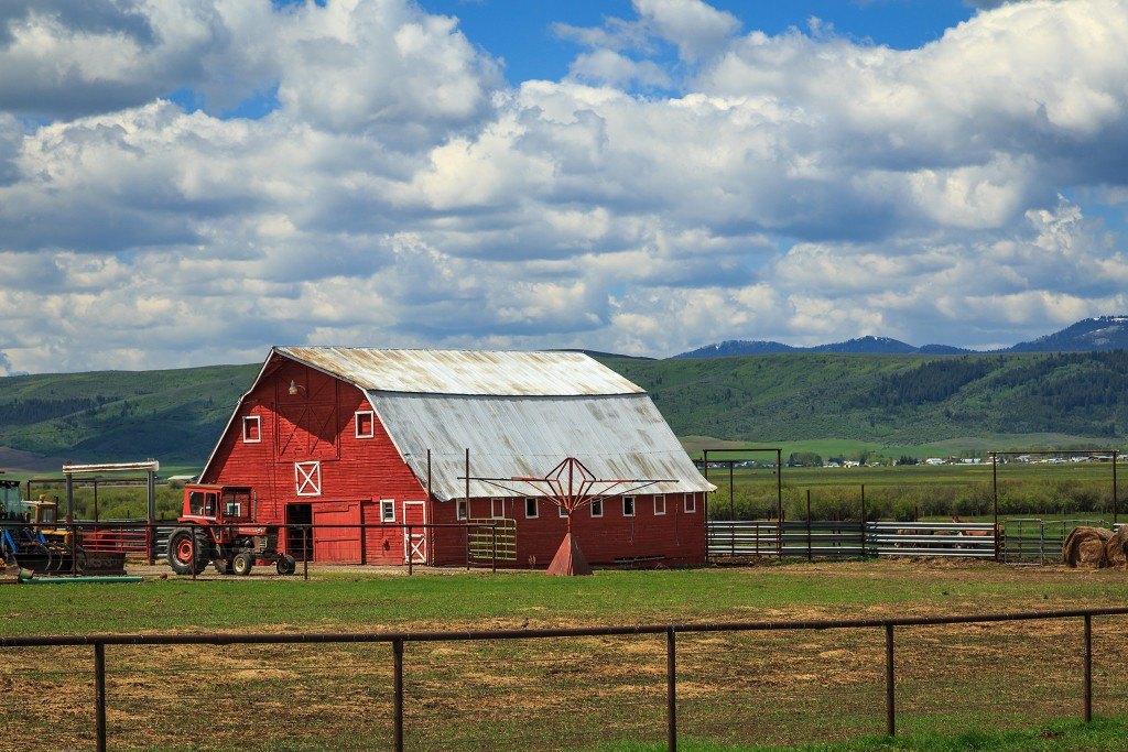 barn on the countryside