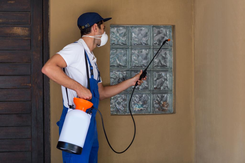 man removing pests